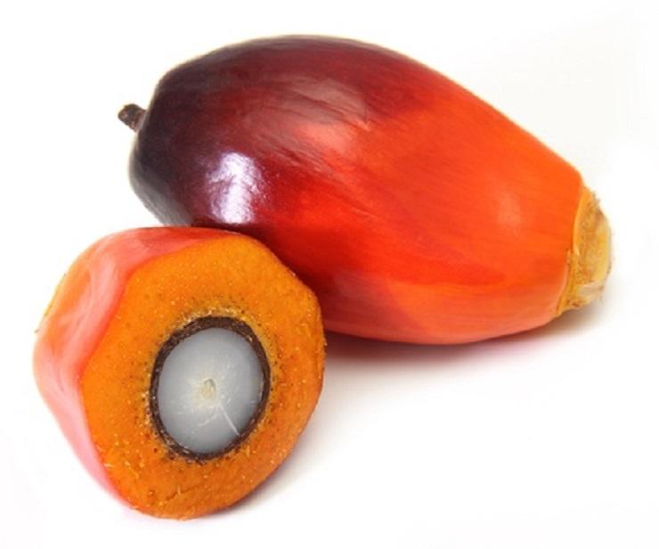 Aprikosenkernöl ist besonders für empfindliche und reife Haut geeignet, da es reich an Enzymen ist und eine leicht antibakterielle Wirkung besitzt.