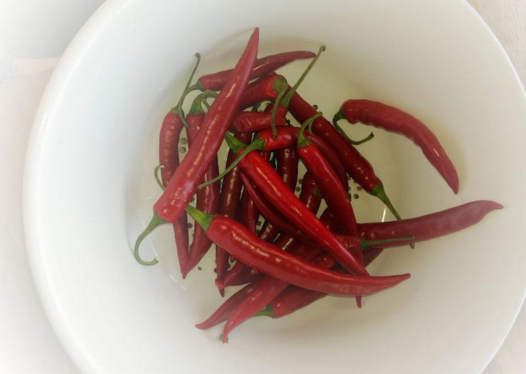 Scharfes Essen regt an, kühlt Agressionen runter und ist gut für die Verdauung. Mein Apulien-Rezept-Tipp zu Olio Santo, eingemachten Pepperonis.